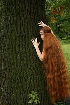 Картинка волос человека для детей